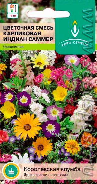 Каталог цветов однолеток