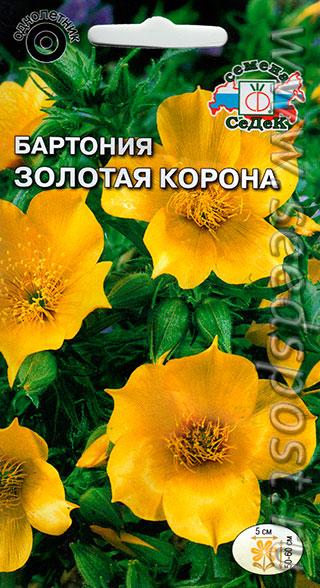 Цветы золотая корона