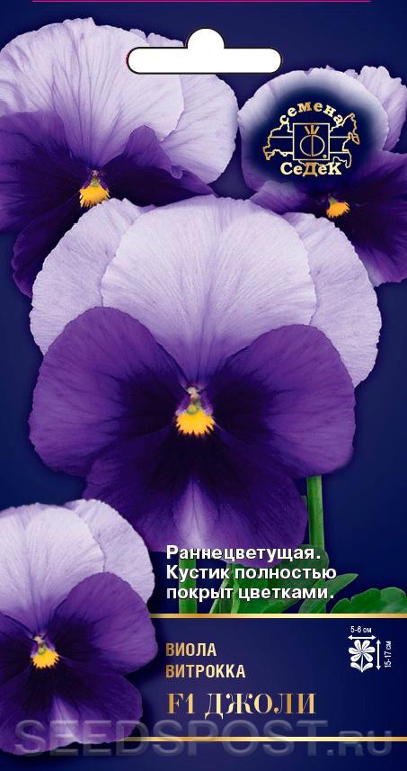 Виола Интернет Магазин Цветов
