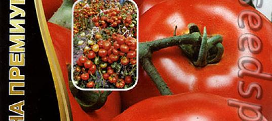 удобный для томат красная гвардия отзывы и фото поможет
