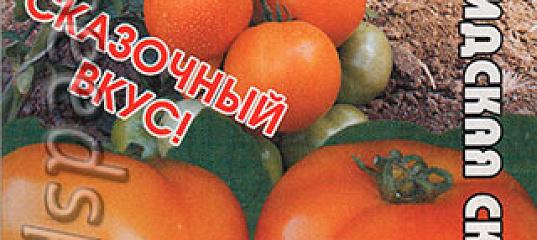 томат персидская сказка отзывы фото диагностирования лечения болезни